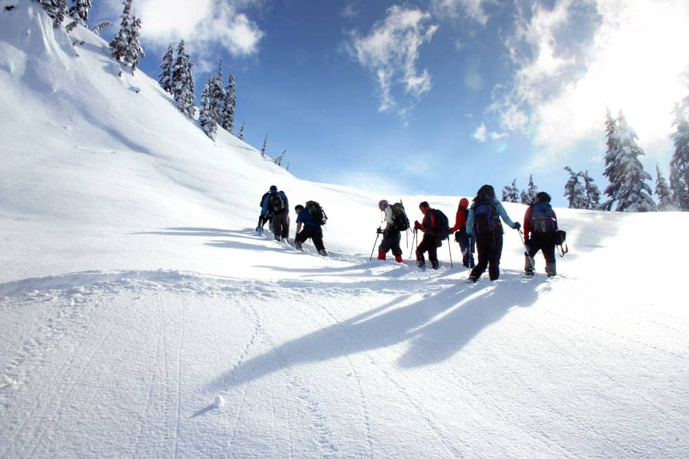 La Ferme des Vônezins. séminaires, incentive, team building.. Pour les entreprises en Haute-Savoie entre le Lac d'Annecy, la Clusaz & le Grand-Bornand